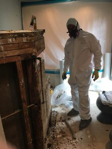 A Mold Removal Technician Cleaning an Infested Home