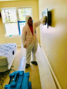 Mold Cleanup Services in a Residential Property